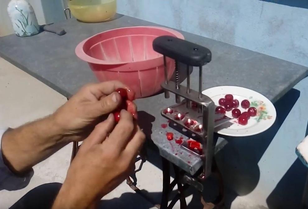 Косточки из вишни своими руками 179